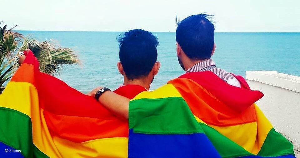 Siete mujeres y un homosexual online