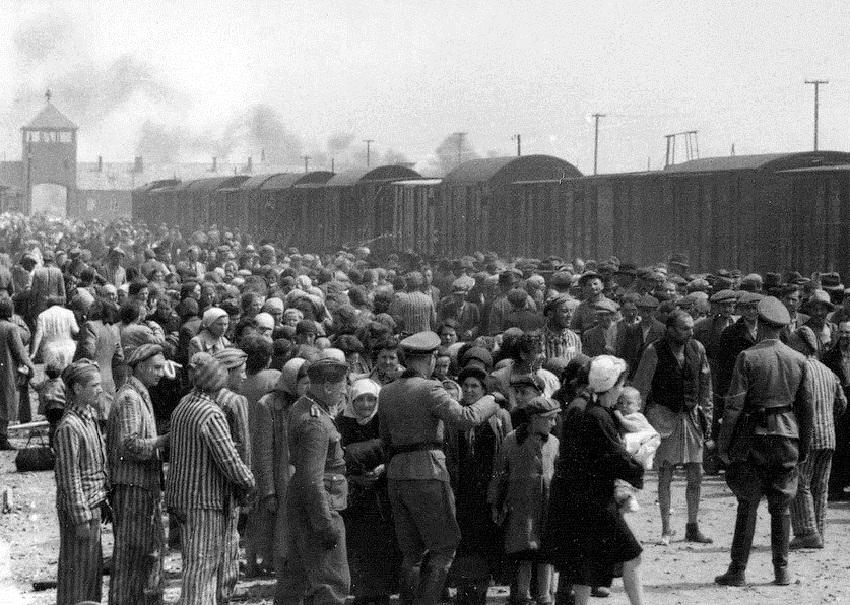 Auschwitz selección